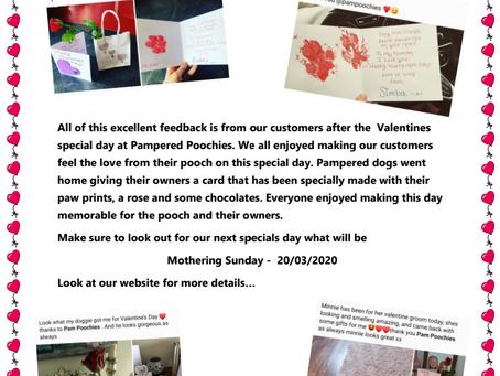 Valentine's day special ❤️🐩
