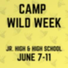 camp wildweek.png