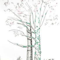 Tree hug (sold)