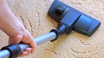 carpet, cleaning, upholstery, cleaners, rug, tile, grout, air, duct, rincon, ga, steam, green, professional, service, best, health, tru, commercial, residental, news, zero, residue, quality,