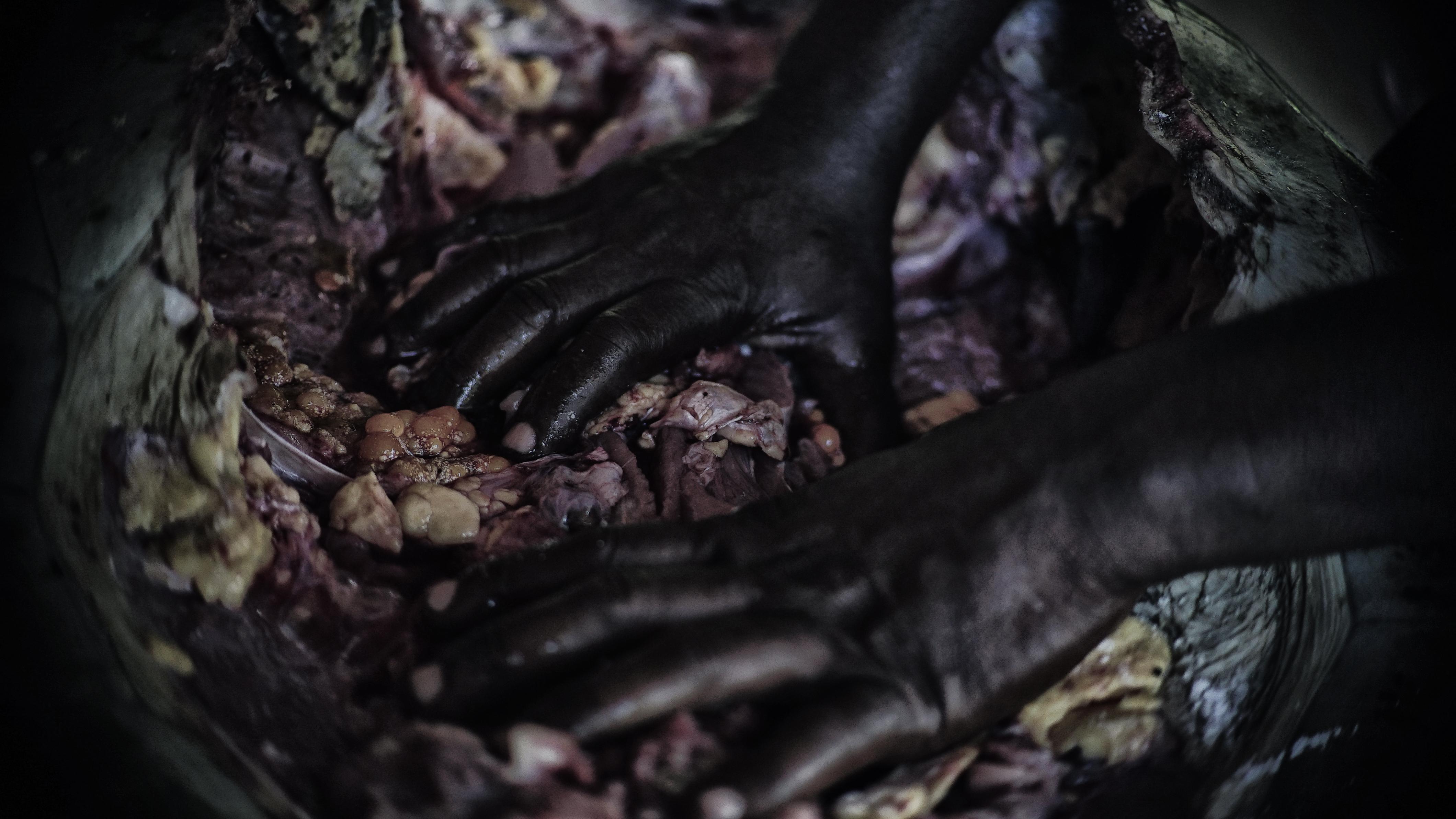 Manjar do Guaporé
