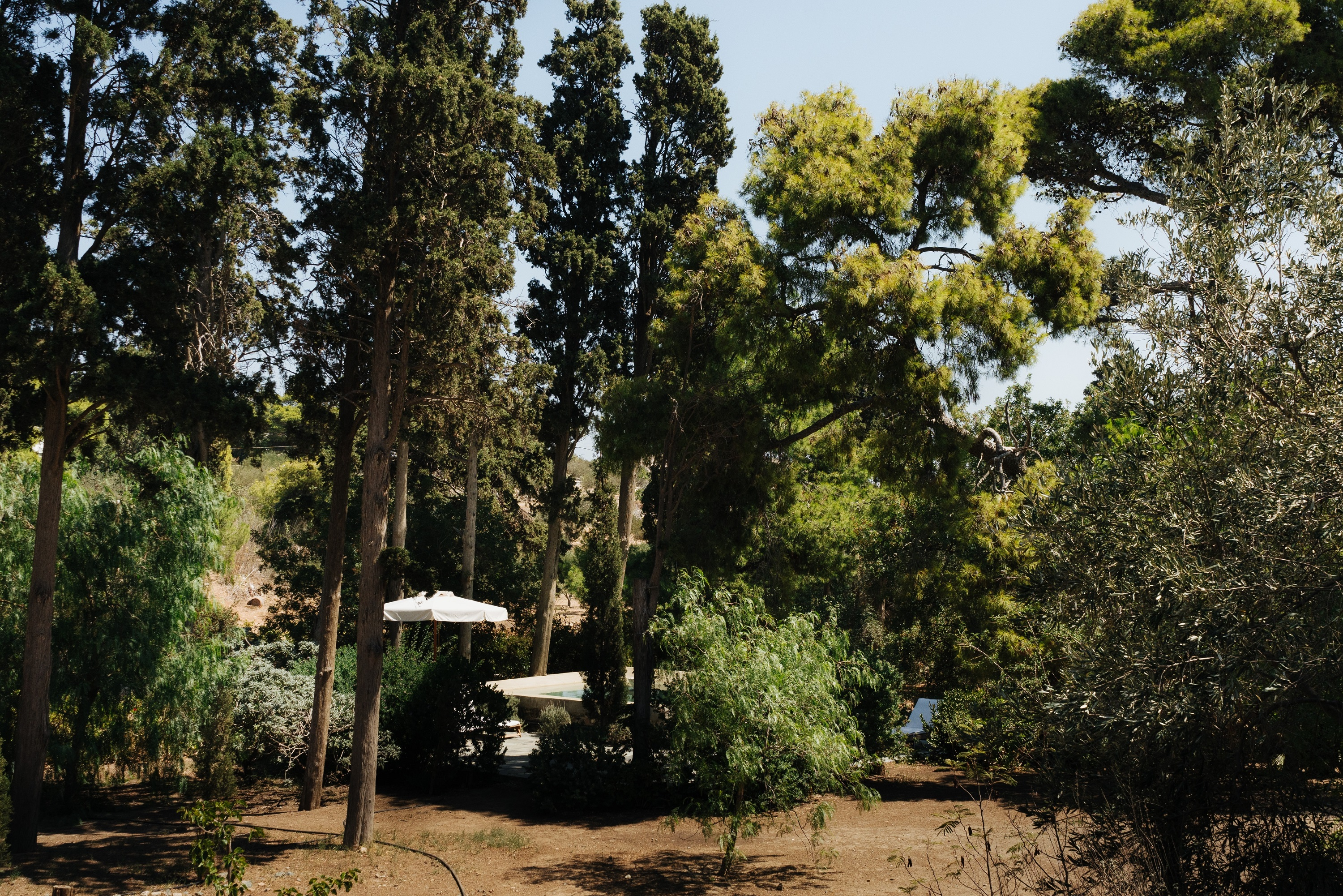 The gardens and plunge pool