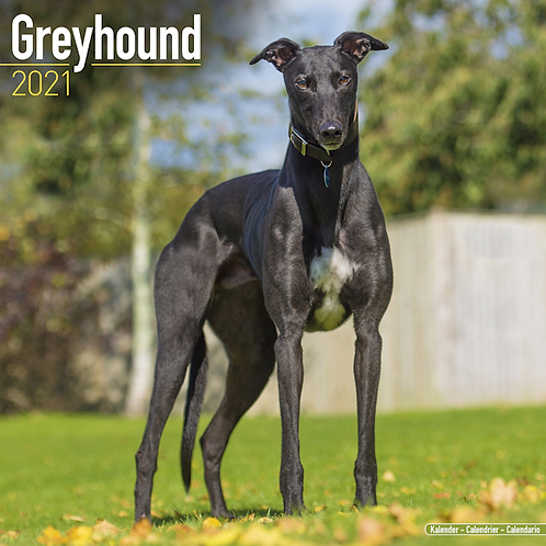 2021 Greyhound Calendar