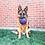 Thumbnail: Kong Flex Ball Dog Toy.