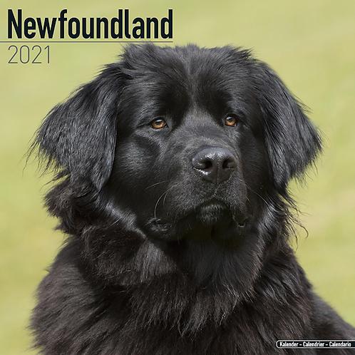 2021 Newfoundland Calendar