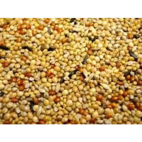 Foreign Finch Mix 950g