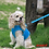 Thumbnail: Puppia Soft Vest Harness Aqua. Price from