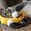 Thumbnail: YEOWWW! Catnip Banana