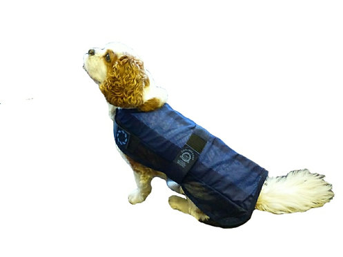 Doggie Cool Coat