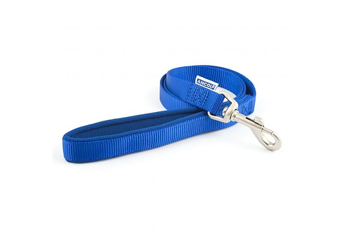 Nylon Lead Blue With Padded Handle