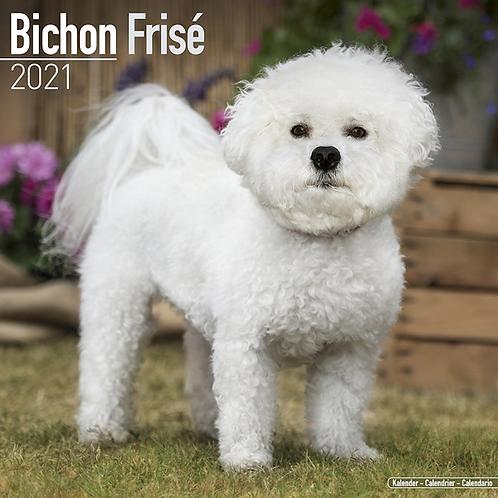 2021 Bichon Frise Calendar