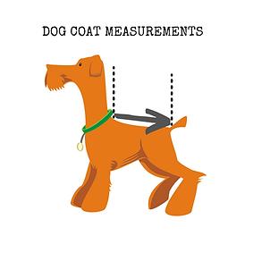 dog coat measurements.png