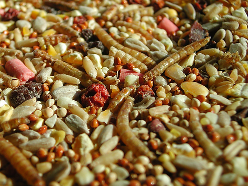 Robin & Songbird Mix 430g, 15kg, Price from