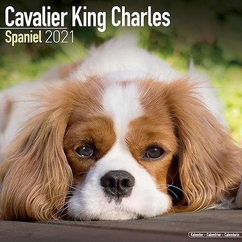2021 Cavalier King Charles Calendar