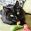 Thumbnail: YEOWWW! Stinkies Catnip Sardines
