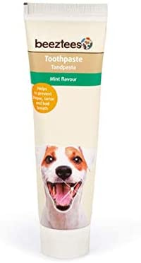 Beeztees Mint Flavour Toothpaste for Dogs 100g