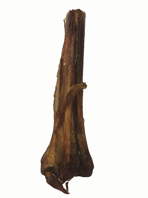 Ostrich Metatarsus Bone