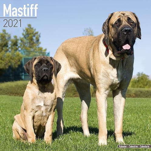 2021 Mastiff Calendar