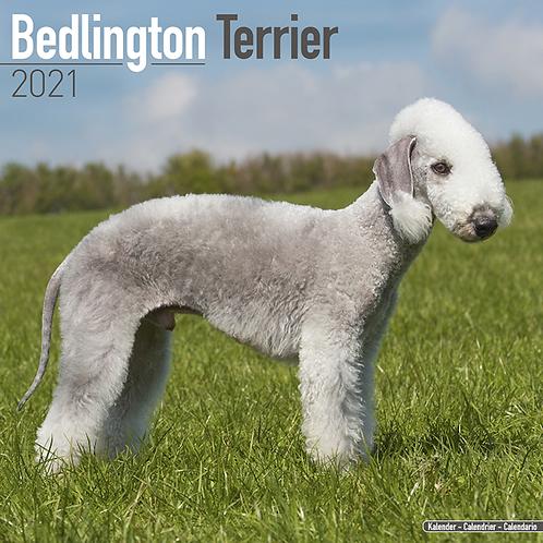 2021 Bedlington Terrier Calendar