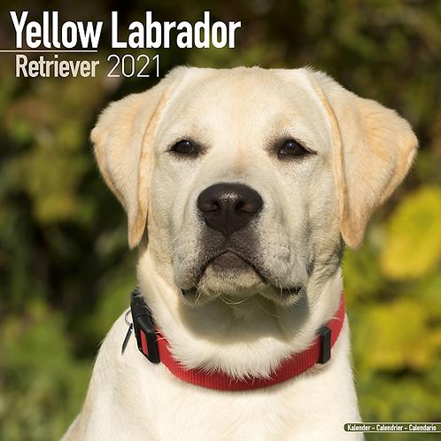 2021 Yellow Labrador Calendar
