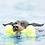 Thumbnail: Kong Airdog® Squeaker Bone. Price from