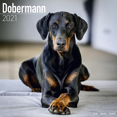 2021 Dobermann Calendar