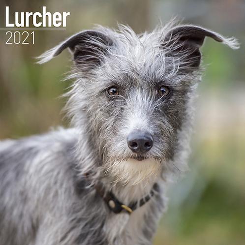 2021 Lurcher Calendar