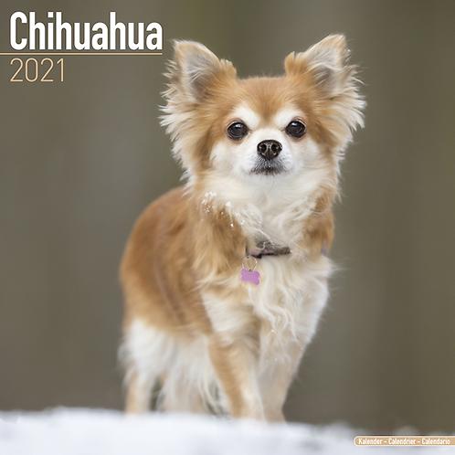 2021 Chihuahua Calendar