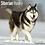 Thumbnail: 2021 Siberian Husky Calendar