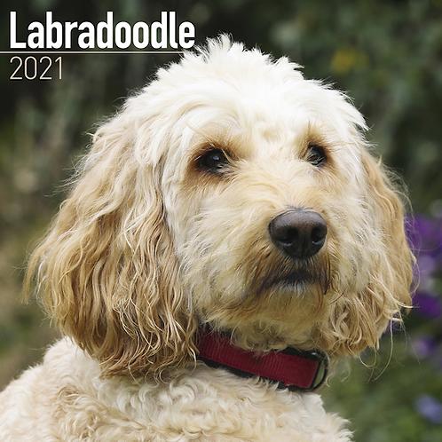 2021 Labradoodle Calendar