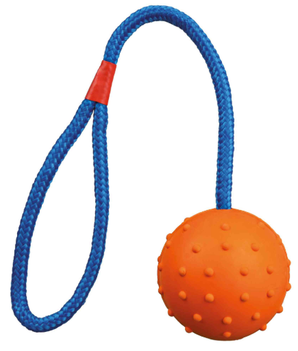 Ball on Rope. Price from