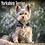 Thumbnail: 2021 Yorkshire Terrier Calendar