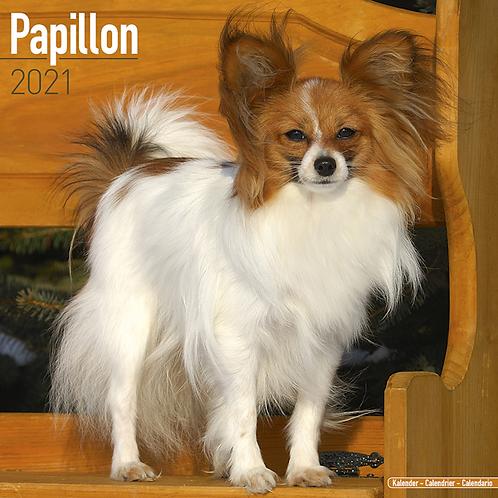 2021 Papillon Calendar