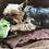 Thumbnail: Fluff & Tuff Americas Savannah Baby Gator