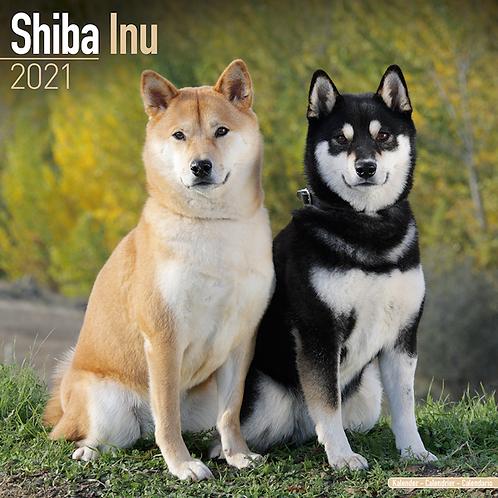 2021 Shiba Inu Calendar