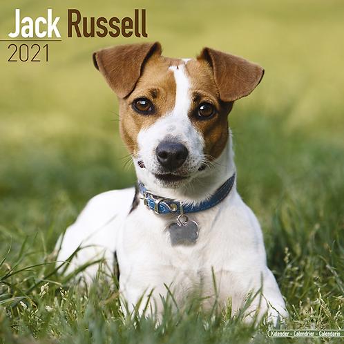 2021 Jack Russell Calendar