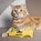 Thumbnail: YEOWWW! Catnip Fish