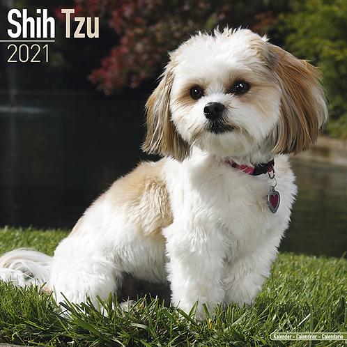 2021 Shih Tzu Calendar