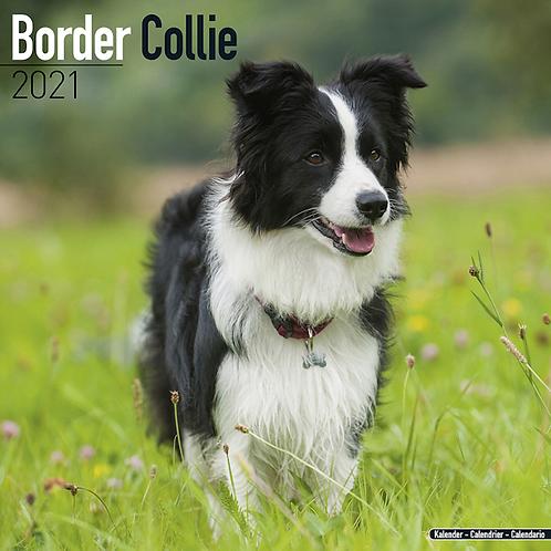 2021 Border Collie Calendar