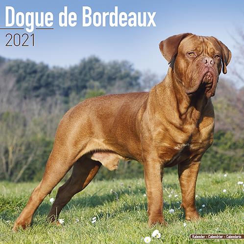 2021 Dogue De Bordeaux Calendar