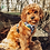 Thumbnail: Ollybyso Jaguar Dog Harness