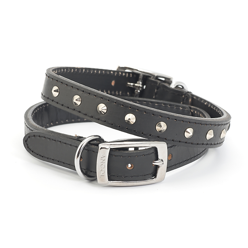 CLASSIC BRIDLE LEATHER STUDDED COLLAR BLACK. Price from