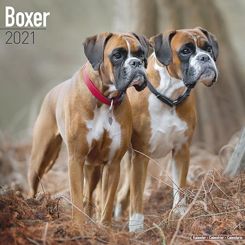 2021 Boxer Calendar