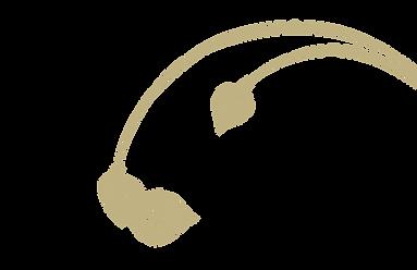 Detailcut2-02.png