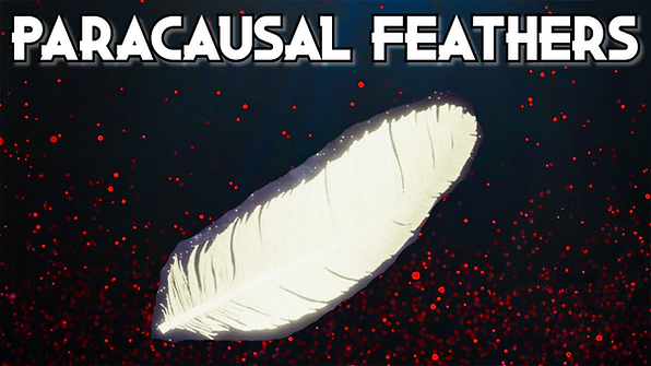 Paracausal Feathers (1).png