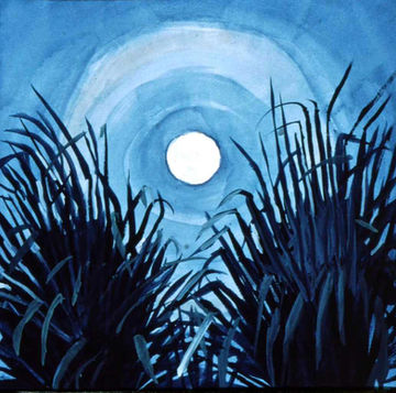 Full Moon and Over Palmettos