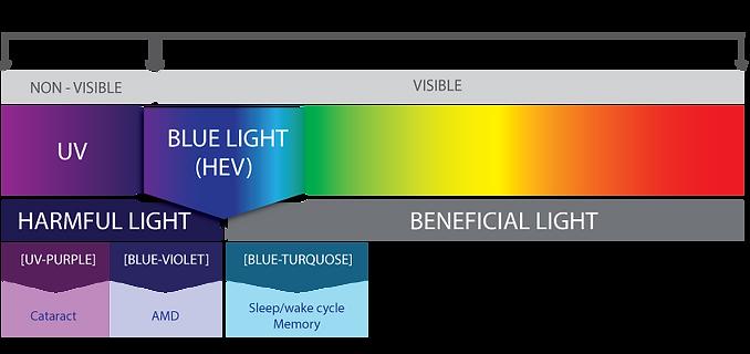 Mavi-Mor-ışık.png