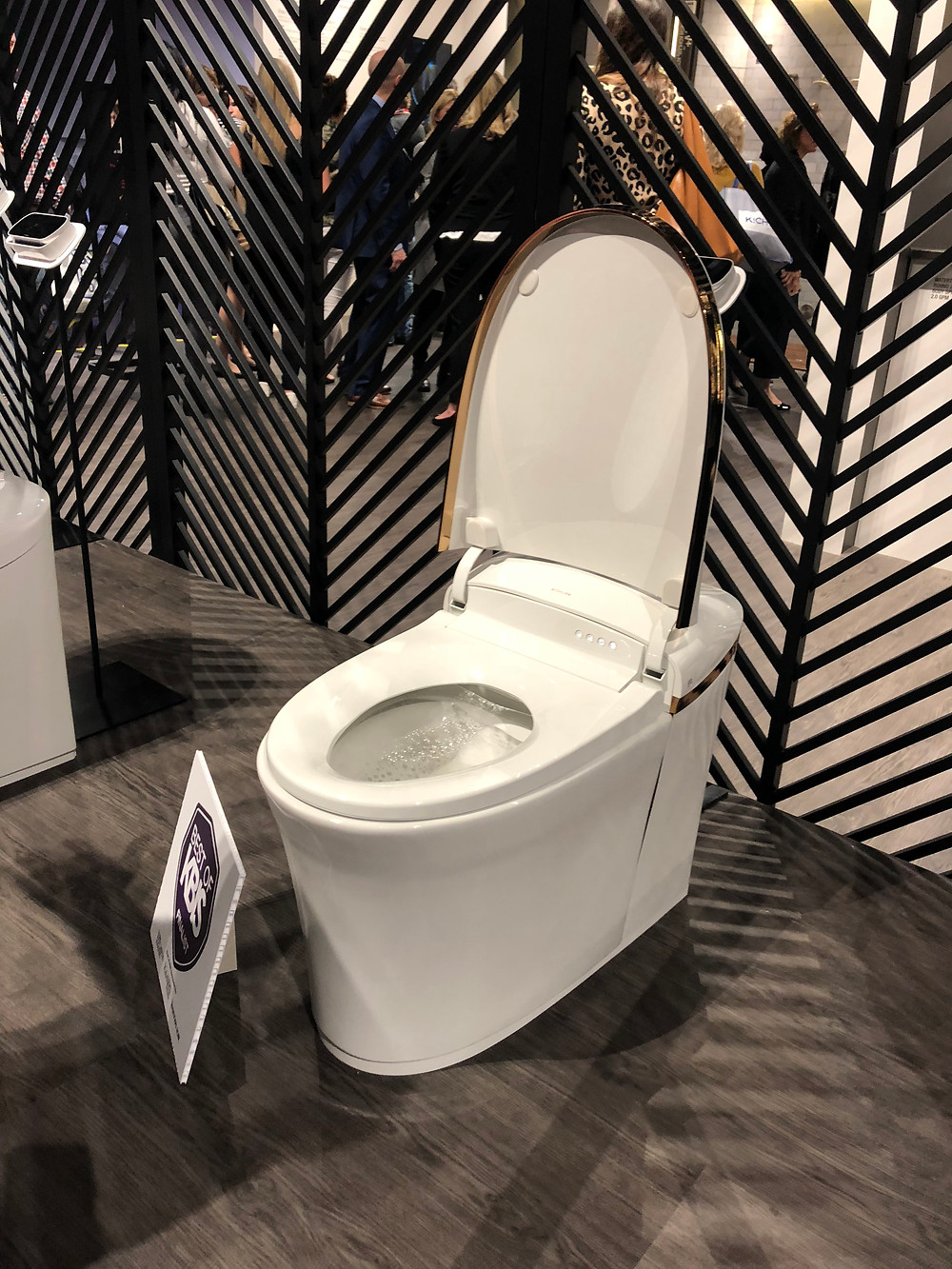 luxury toilet with bidet features