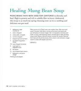 Healing Mung Bean Soup Recipe Terry Walters