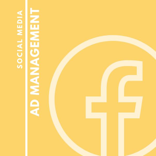 Social Media Ad Management